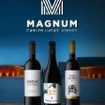 magnum-vinhos