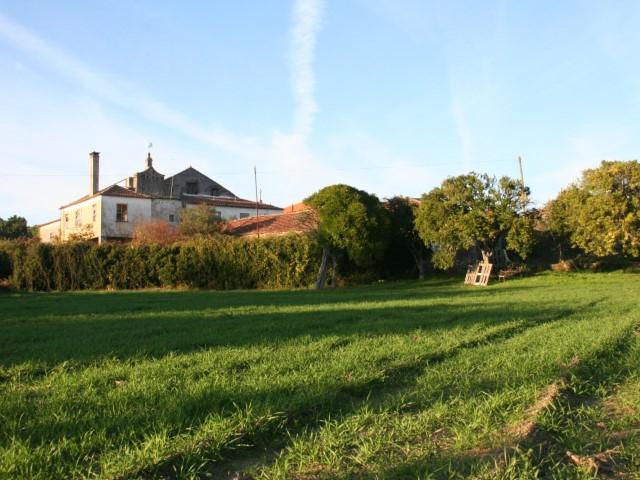 casa-linhar-quintas-de-sirlyn-3