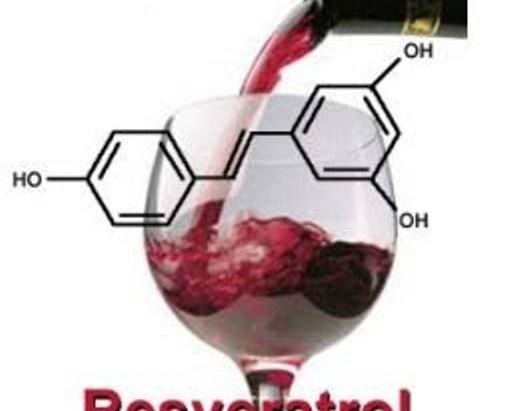 resveratrol-2