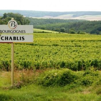 chablis-6