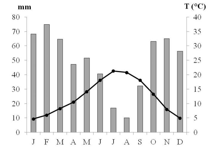 Precipitação anual