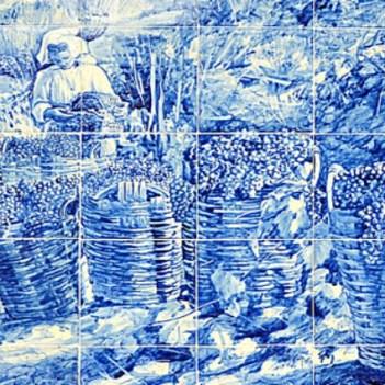 alto-douro-vinhateiro-patrimonio-mundial-16