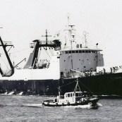 bacalhoeiros-portugueses-elisabeth