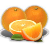 logo-laranja-do-algarve