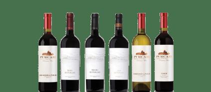 purcari-vinhos