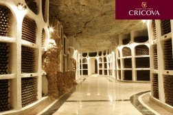 cricova-winery-galerias-1
