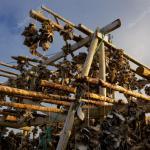 depositphotos_12588851-stock-photo-drying-stockfish