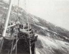 companhia-de-pescarias-lisbonense-2