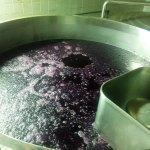 s-lendros-cabernet-sauvignon-em-plena-fermentacao