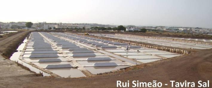 Salinhas de Rui Simeao 8