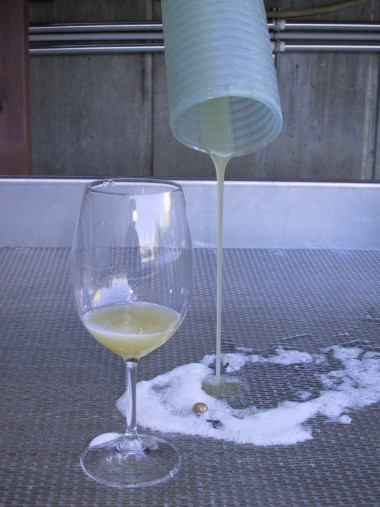Ice Wine a sair ainda em mosto