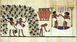 Egyptians 1