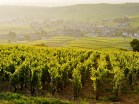 bourgogne-champagne-super-stay-combo-5-days-5nights-in-hotel-beaune-reims