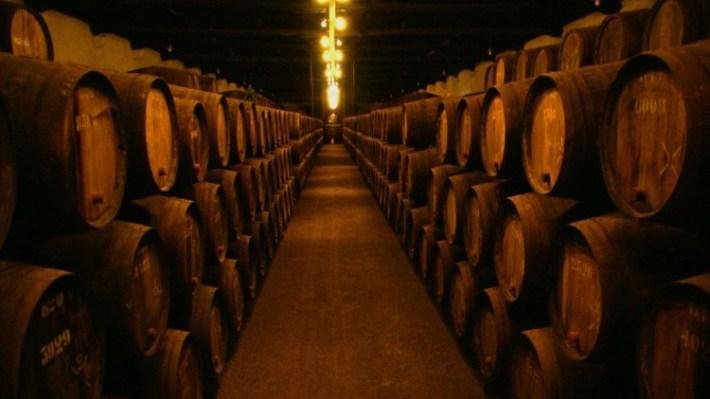 vinhodoporto02-750x422