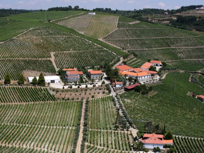 Peso da Régua foi eleita Cidade do vinho 2019