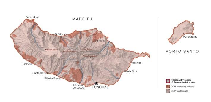 Região do Vinho da Madeira e como se produz 7