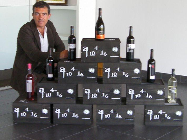 Antonio Banderas um ator que é produtor de vinhos 2