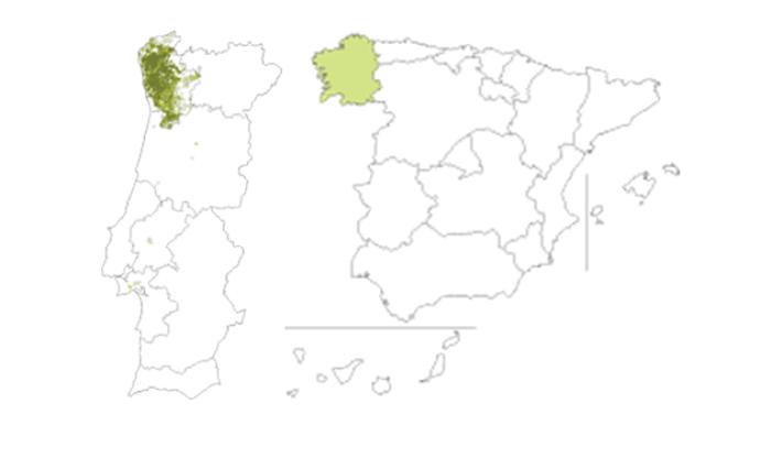 distribuicao em portugal e espanha