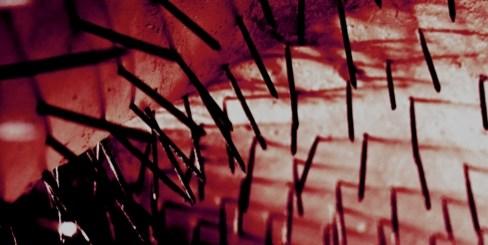 Adrenocromo - Nuovo EP di Artisti del Colore Sociale