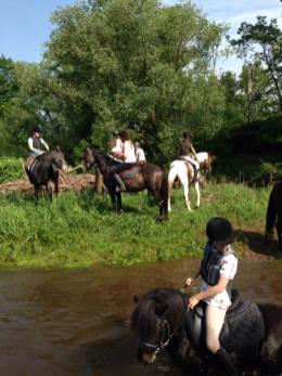 équitation poney2
