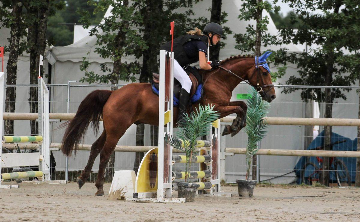 Magnifique saut d'obstacle d'Adriano