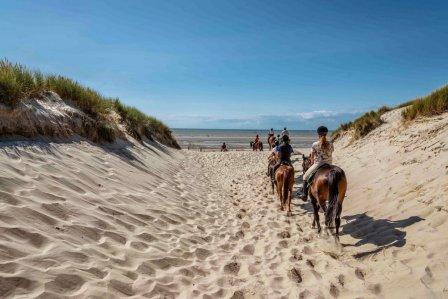 Balade à cheval dans les dunes