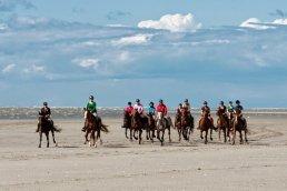 Randonnée à cheval en bord de mer