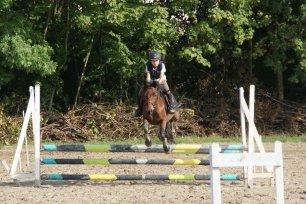 Poney saut d'obstacle