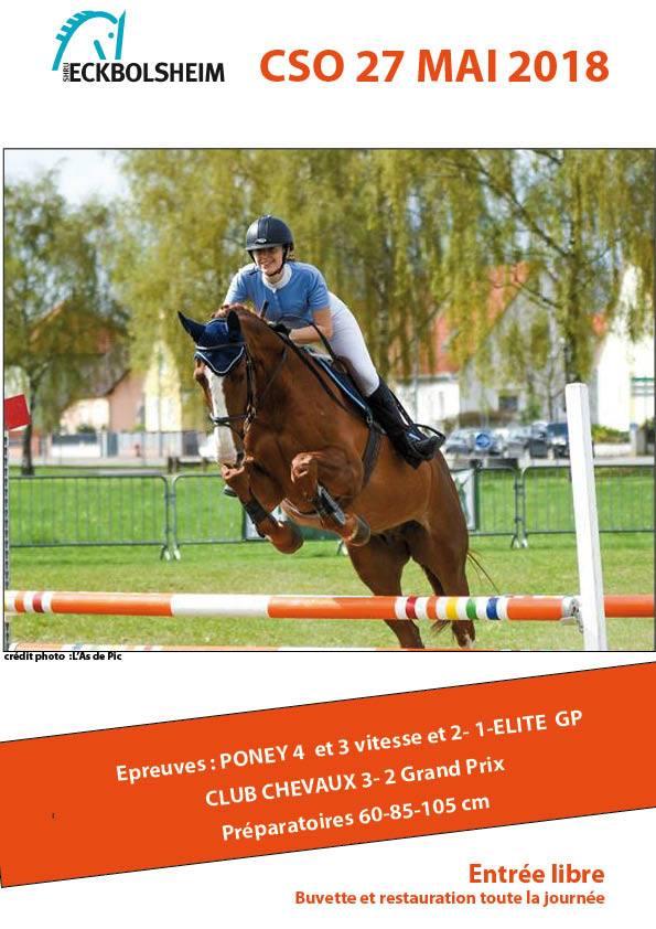 concours chevaux poneys
