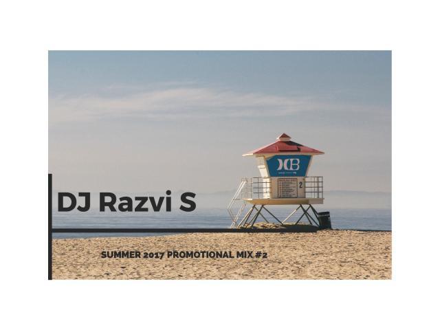 djrazvis logo-page-001