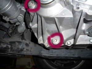 CVT and rear Differential plugs  ClubLexus  Lexus Forum