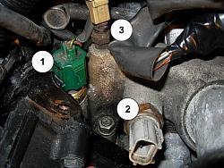 3 Coolant Temperature Sensors?  ClubLexus  Lexus Forum