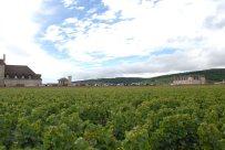 Bourgogne-2013-63