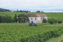 Bourgogne-2013-66