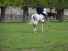 Club-MBF-Pays-Loire-Acte-2-053