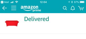 Screenshot showing Amazon item has been delivered
