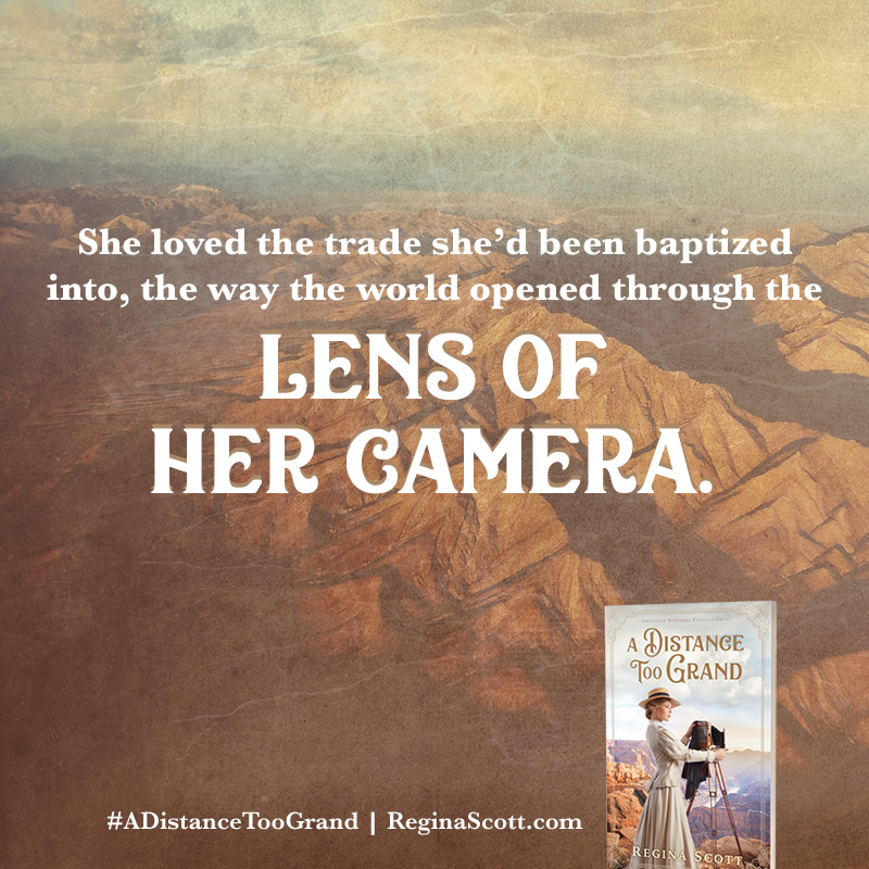 Book Meme: She loved the trade she'd been baptized into, the way the world opened through the lens of her camera.