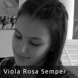 Viola Rosa Semper