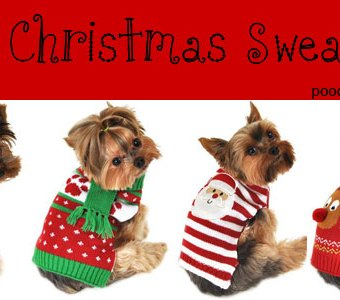Ugly Christmas sweaters for dogs 4 cute holiday outfits for your pooch