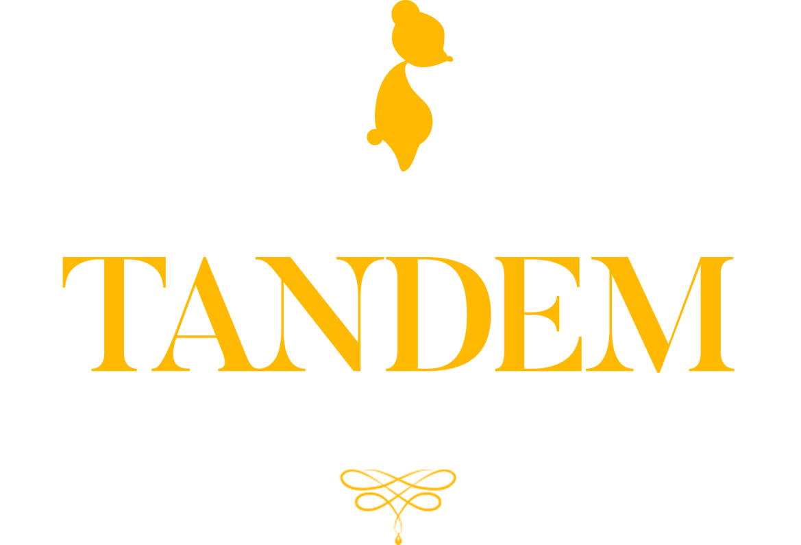 Tandem: A Tale of Shadows preview