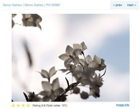 Zen Photo, Free Image Gallery