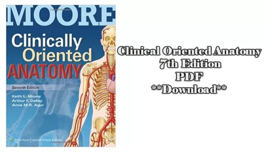 Famous Moore Clinically Oriented Anatomy Festooning - Anatomy And ...