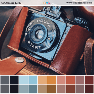 Leather and Lens - Color Inspiration from Color My Life