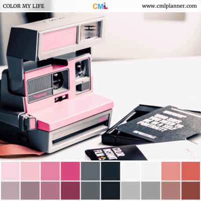 Pink Polaroid - Color Inspiration from Color My Life