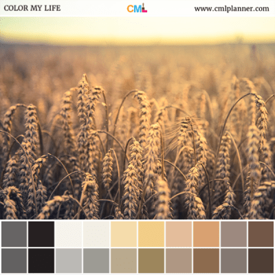 Wheat Dreams - Color Inspiration from Color My Life