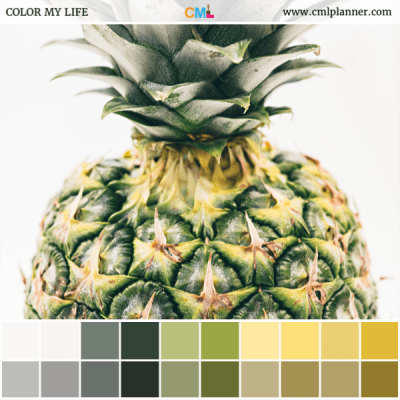 Pineapple - Color Inspiration from Color My Life
