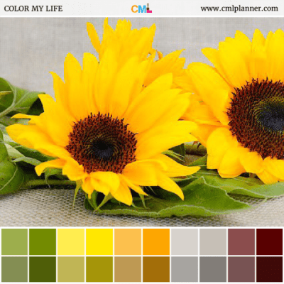 Sunflower Love - Color Inspiration from Color My Life