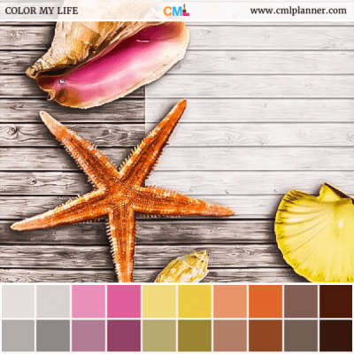Beach Treasure - Color Inspiration from Color My Life