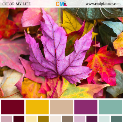 Fall Leaves - Color Inspiration from Color My Life