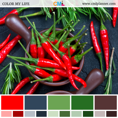 Spicy Chroma - Color Inspiration from Color My Life